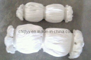 Nylon Fishing Nets, Mono Fishing Nets, 400md Fishing Nets for Zambia pictures & photos