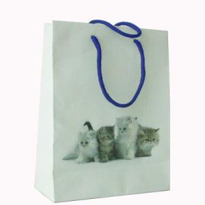 Printed Paper Shopping Bag with Logo pictures & photos