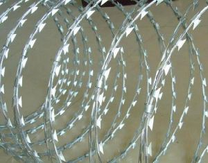 Low Price Security Fencing Cheap Galvanized Concertina Razor Barbed Wire pictures & photos