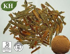 Cascara Sagrada Bark Extract: 4: 1, 5: 1, 10: 1 pictures & photos