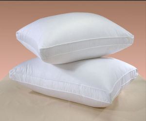 2016 Modern Design Hotel Pillows (DPFP8020) pictures & photos