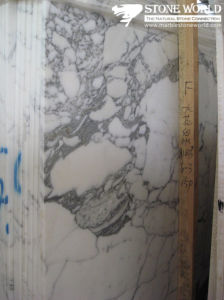 Italy White Arabescato Corchia Marble Slabs for Countertop pictures & photos