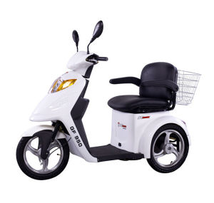 EEC Three Wheel Motorcycle with 800 Motor