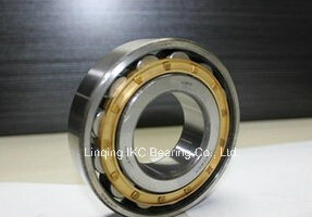 China Bearing, Cylindrical Roller Bearing N417, Nu417, Nup417, Nj417, Nu2217, Nup2217, Nj2217, Nu2317, Nup2317, Nj2317 pictures & photos