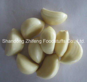 New Crop Fresh Peeled Garlic for UK pictures & photos