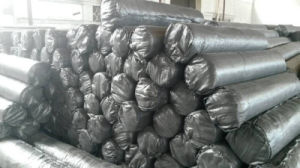 Woven Geotextile/ Ground Cover/ Weed Barrier Fabric/ Weed Control Fabric pictures & photos