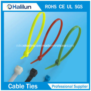Nylon66 Cable Tie with Erosion Control pictures & photos