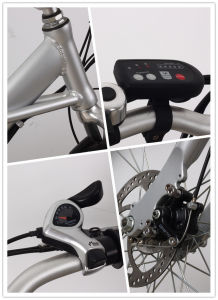 Fast Speed Mountain Electric Bicycle with Good Price pictures & photos