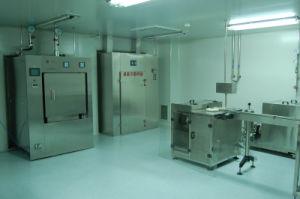 Depyrogen Sterilizer pictures & photos