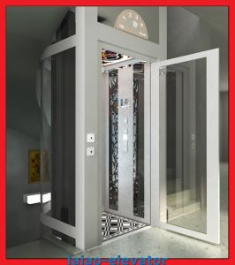 High-End and High Quality for Villa/Home Elevator Lift pictures & photos