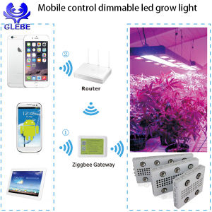 Plant Grow Light WiFi 3G Mobile Control COB LED Grow Light 1000W 2000W 3000W pictures & photos