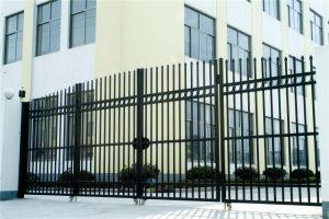 Hot Sale Exterior Security Decorative Wrought Iron Steel Fence Door pictures & photos