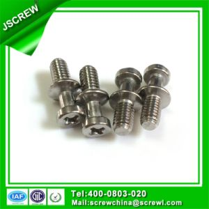 Stainless Steel 304 Phillips Head Customized Special Screw pictures & photos