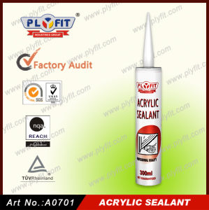 Acrylic Sealant pictures & photos