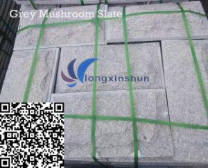 Customized Natural Grey Mushroom Granite Cladding pictures & photos