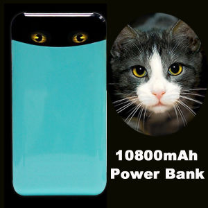 10000mAh Power Bank Manufactury New Interesting Power Bank pictures & photos