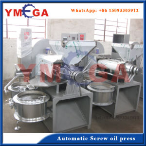 Advanced Design Automatic Multifactional Teaseed Oil Press Making Machine pictures & photos