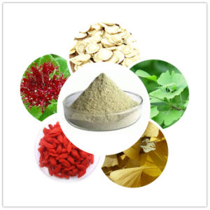 High Effective Plant Extract Powder for Nutrition Supplement Products pictures & photos