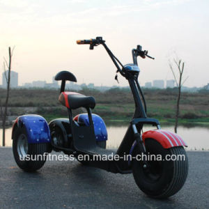 3wheels Electric Motorcycle with 1000W Motor pictures & photos