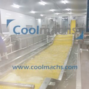 Frozen Fruit Processing Equipment IQF Food Machine for Freezing Fruit Products pictures & photos