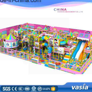 Jungle Theme Kid Slide Indoor Playground pictures & photos