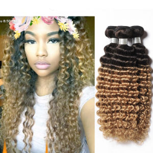 Deep Wave Brazilian Hair 4 Bundles Brazilian Deep Wave 1b30 Blonde Brazilian Hair Weave Bundles Ombre Hair Extension pictures & photos