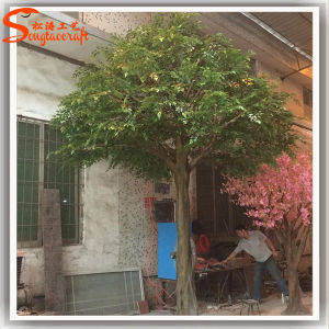 2016 New Design Artificial Ficus Tree for Decoration pictures & photos
