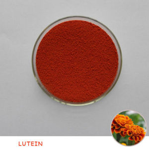 Feed Grade 1.5% Lutein for Fish and Shrimp pictures & photos