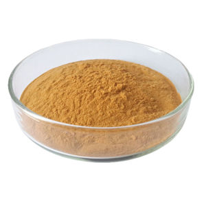 10: 1 Monk Fruit Extract Luo Han Guo Powder pictures & photos