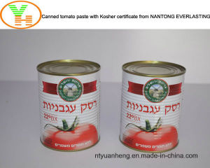 Aseptic Tomato Paste Canned Vegetable pictures & photos