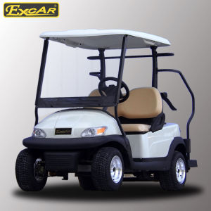 White Color 2 Seater Golf Cart with Caddie Plate pictures & photos