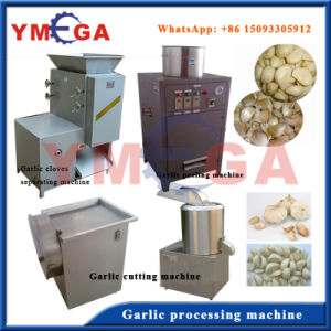 Hot Sale Automatic Type Durable Working Garlic Separating Machine pictures & photos