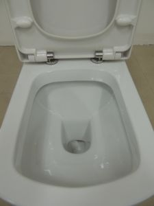 Bathroom Washdown Two Piece Back Inlet Toilet Sanitary Ware (3887) pictures & photos