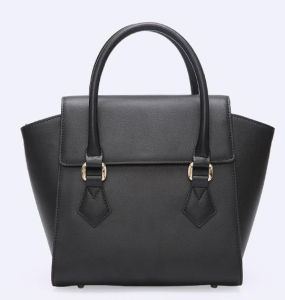 2017 New Arrival Winged Hand Bag Single Color Bag Hcy-4052 pictures & photos