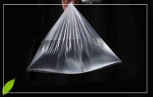 Plastic Clear Food Bag Without Printing pictures & photos