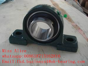 All Type Pillow Block Bearing pictures & photos