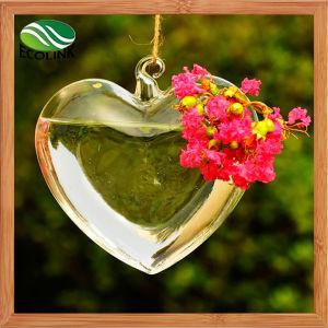 Heart Shape Glass Vases Air Plant Glass Terrarium pictures & photos