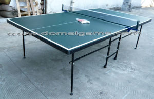 Table Tennis Table DTT9024 pictures & photos