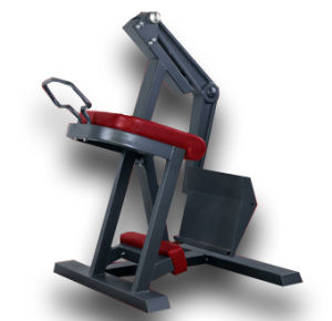 Commercial Gym Equipment Glute Isolator (SM08) pictures & photos