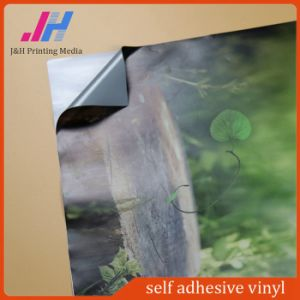 High Grade PVC Self Adhesive Vinyl pictures & photos