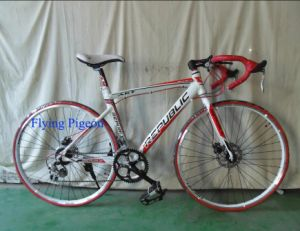 Popular Road Bike, Alloy 6061 Frame Racing Bicycles (FP-RB-08) pictures & photos