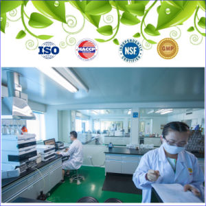 GMP Dietary Supplements and High Quality Product Fish Oil Omega 3 & Vitamin E Softgel 1005mg pictures & photos