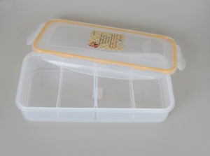 Plastic Lunch Box/Food Storage Container (TS-W2)