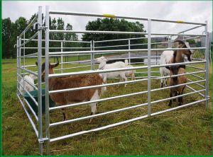 High Quality 7 Rail Interlocking Sheep Hurdle Sheep Corral Panel pictures & photos
