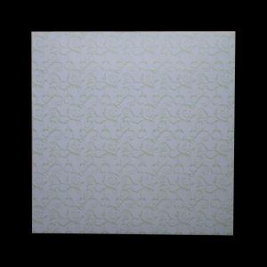600*600 Mm Hot Satmping 60cm*60cm PVC Panel pictures & photos