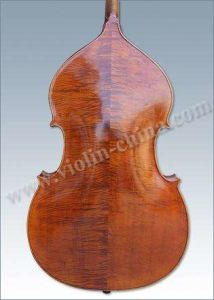 Advanced Double Bass pictures & photos