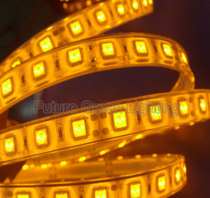 LED Flex Strip Decorative/Holiday Light pictures & photos