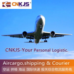 Discount Freight FM China to MEX/ Mexico