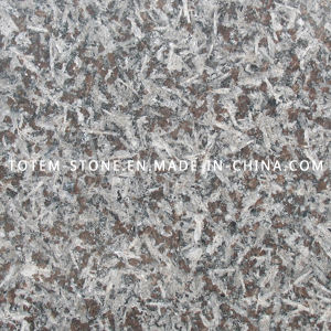Design Natural Stone Granite Tile Flooring for Kitchen Floor pictures & photos