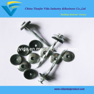 Screw Roofing Nails with Rubber Washer pictures & photos